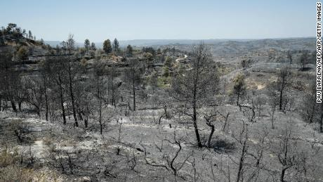 June 28, 2019 - a forest fire in Catalonia, Spain, burned more than 6,500 hectares of land.