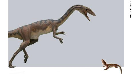 Scientists in Switzerland discover a new dinosaur species