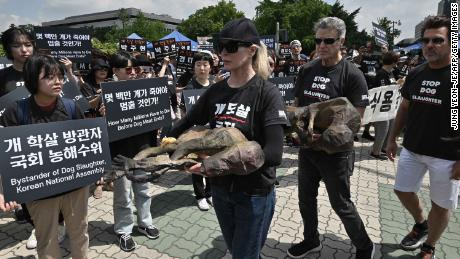 American actress Kim Basinger holds a replica of a dead dog in a protest against the dog meat trade outside South Korea's National Assembly on July 12, 2019.