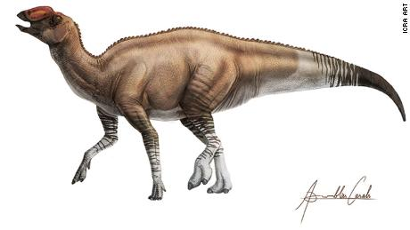 A full-body illustration of what the dinosaur looked like 80 million years ago.