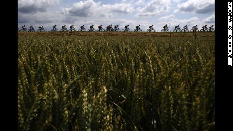 Les cyclistes pédalent à la campagne lors de la troisième étape du Tour de France l'année dernière.