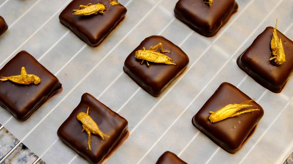 Gold-coated crickets were used to top chocolates in chocolate maker Sylvain Musquar's store in northeastern France. The chocolatier had the idea of placing mealworms or crickets on his chocolates after working in Japan and South Korea.
