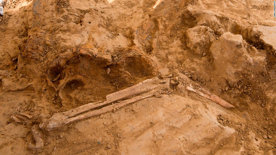 Human remains and musket balls found at battle site marking Napoleon Bonaparte's final defeat