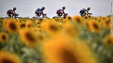 This year's Tour de France has been postponed.