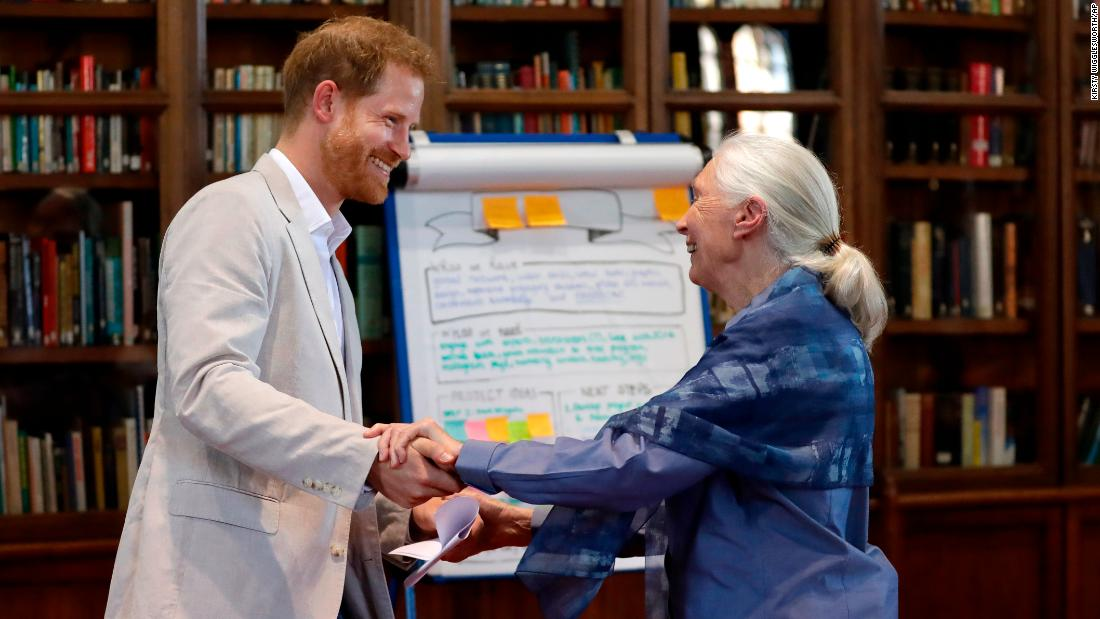 Prince Harry and Jane Goodall re-enact a chimp greeting
