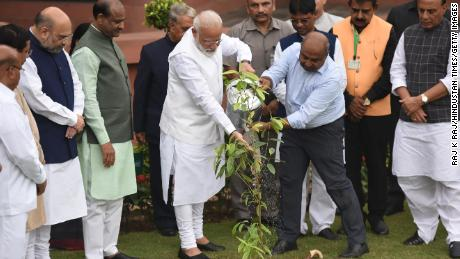 Prime Minister Narendra Modi plants a sapling as part of a wider plantation campaign, in New Delhi, India, July 26, 2019.