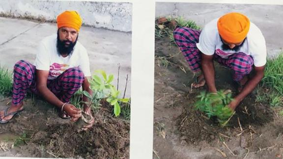 Those who want to apply for gun license will have to supply an image of themselves planting a sapling.