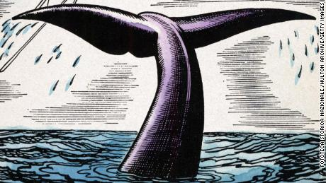 "Illustration from ""Moby-Dick"" by Herman Melville (1819-1891). The novel was first published in 1851."