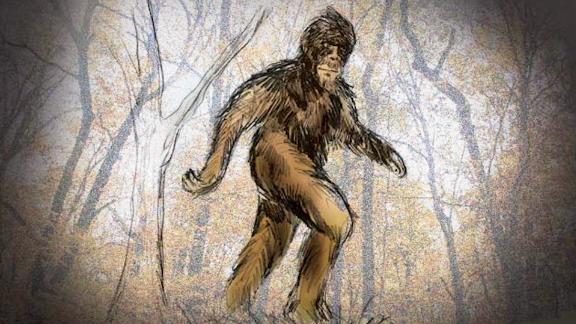 Embargo: Flint-Saginaw-Bay City, MI  A TV5 artist's rendering of Bigfoot.