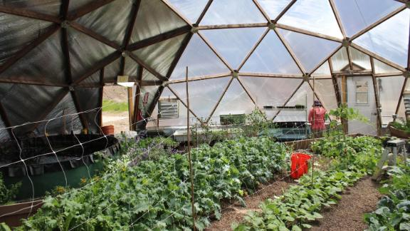The Cloud City Conservation Center grows vegetables in a pair of greenhouses, and sells the produce through a community-sponsored agricultural program.