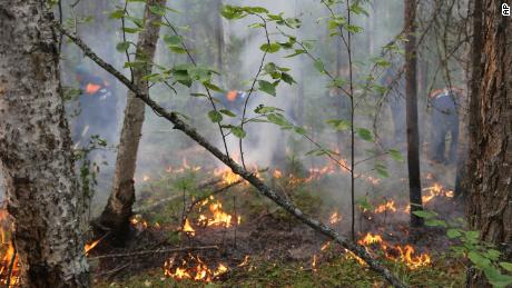 Fires, floods (and even bugs) are challenging Russia's stance on the climate crisis
