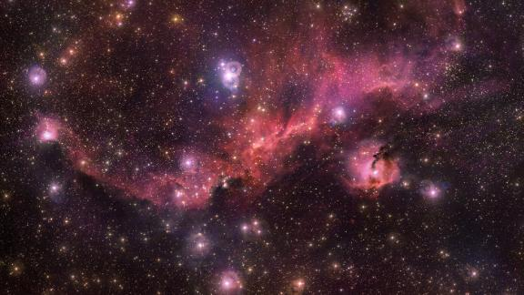 Glowing gas clouds and newborn stars make up the Seagull Nebula in one of the Milky Way galaxy