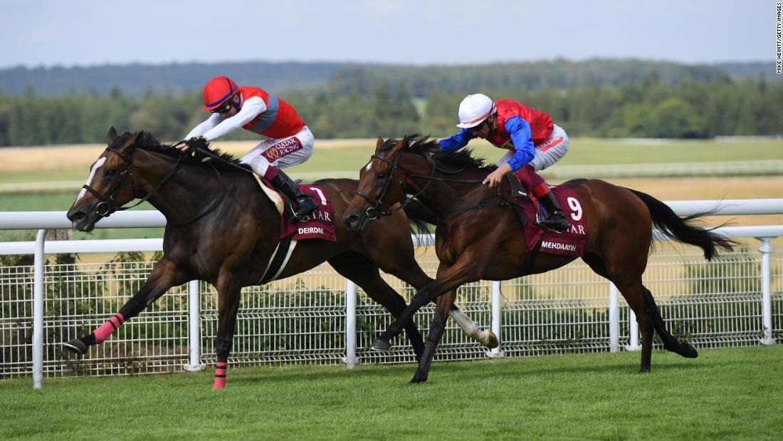 Arabian Racing In The Heart Of The British Countryside Cnn