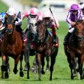 Frankie Dettori riding Too Darn Hot  The Qatar Sussex Stakes