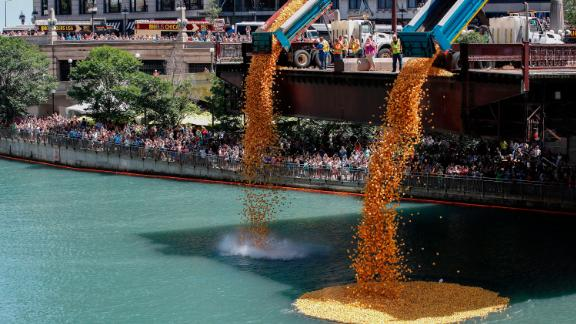 Rubber ducks are dropped into the Chicago River to start the annual Ducky Derby.
