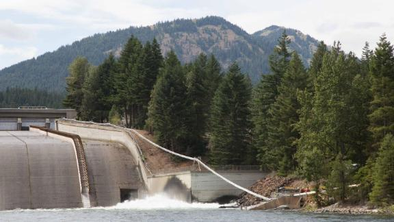 Salmon swim into the tube and shoot out (safely, Vince Bryant says) over the dam.