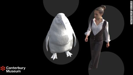 A 'monster penguin' as big as a human once lived in New Zealand