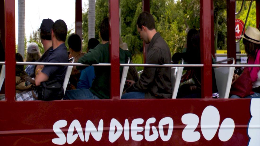 City Spotlight: San Diego