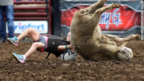 DES MOINES, IOWA - AUGUST 12: Wrapped in a helmet and protective vest, a young girl tumbles off a ewe during the Wool Riders Only Mutton Bustin' competition at the Iowa State Fair August 12, 2019 in Des Moines, Iowa. First held in 1854, the Iowa State Fair sees more than a million visitors a year, including presidential hopefuls ahead of next year's all-important Iowa Caucuses. (Photo by Chip Somodevilla/Getty Images)