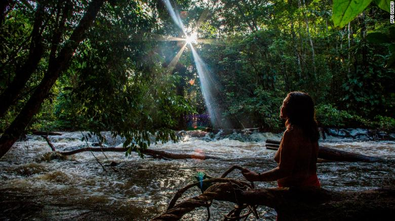 Chief Ajareaty Waiapi stands by the Rio Onca river looking out into the forest.