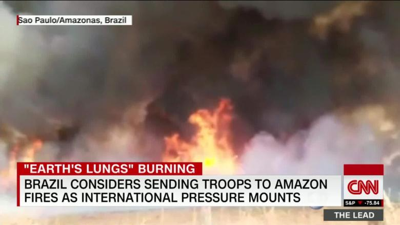 Image result for Amazon fires lungs of the earth