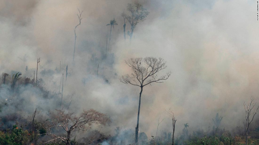 Here's what we know about the fires in the Amazon rainforest