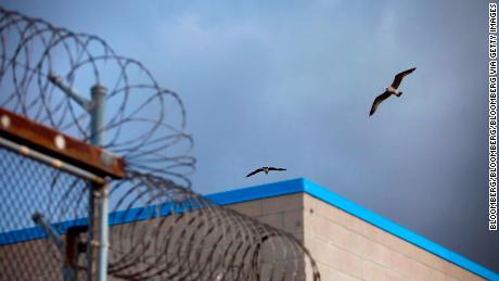 A bird flies over barbed wire on top of fences at the Richard J. Donovan Correctional Facility in San Diego.