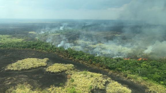 """""""This is not just a forest that is burning"""", said Greenpeace's Rosana Villar. """"This is almost a cemetery. Because all you can see is death."""""""