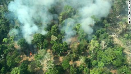 Flying over the Amazon fires - all you can see is death