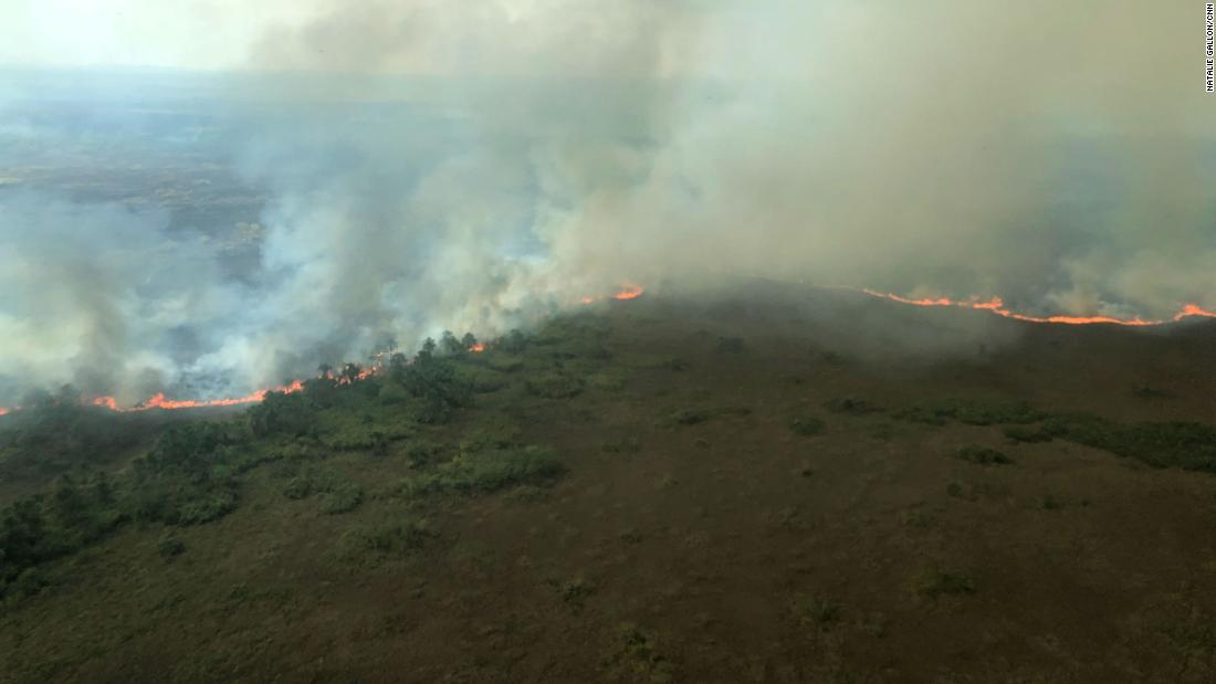 'All you can see is death.' The regions reeling from the Amazon rainforest fires