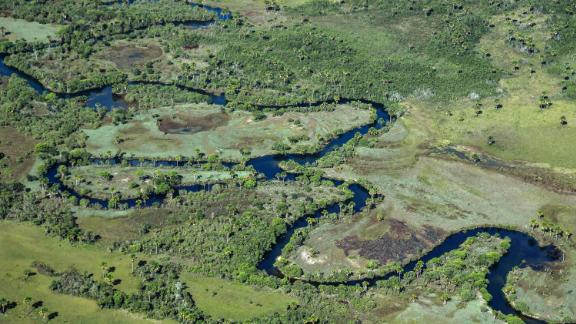 Aerial view taken on May 29, 2019 showing a native Cerrado (savanna) in Formosa do Rio Preto, western Bahia state.