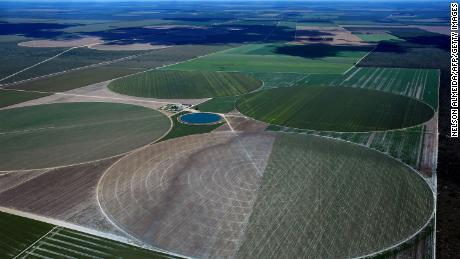 Agricultural fields in Formosa to Rio Preto, western Baja. Native vegetation is often cleared for growing soybeans.