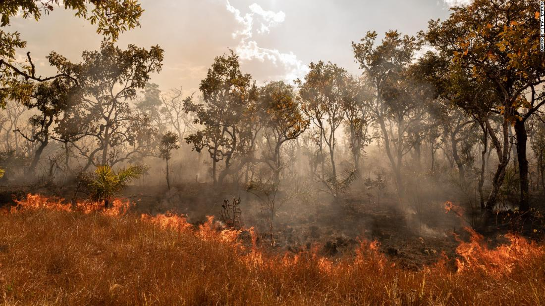 "A wildfire burns in Tocantínia, Brazil, in September 2018. In the Cerrado region, wildfires are common for two reasons, said photographer <a href=""http://www.marciopimenta.com/"" target=""_blank"">Marcio Pimenta.</a> One is extreme heat. The other is farmers clearing space for soybeans and livestock."