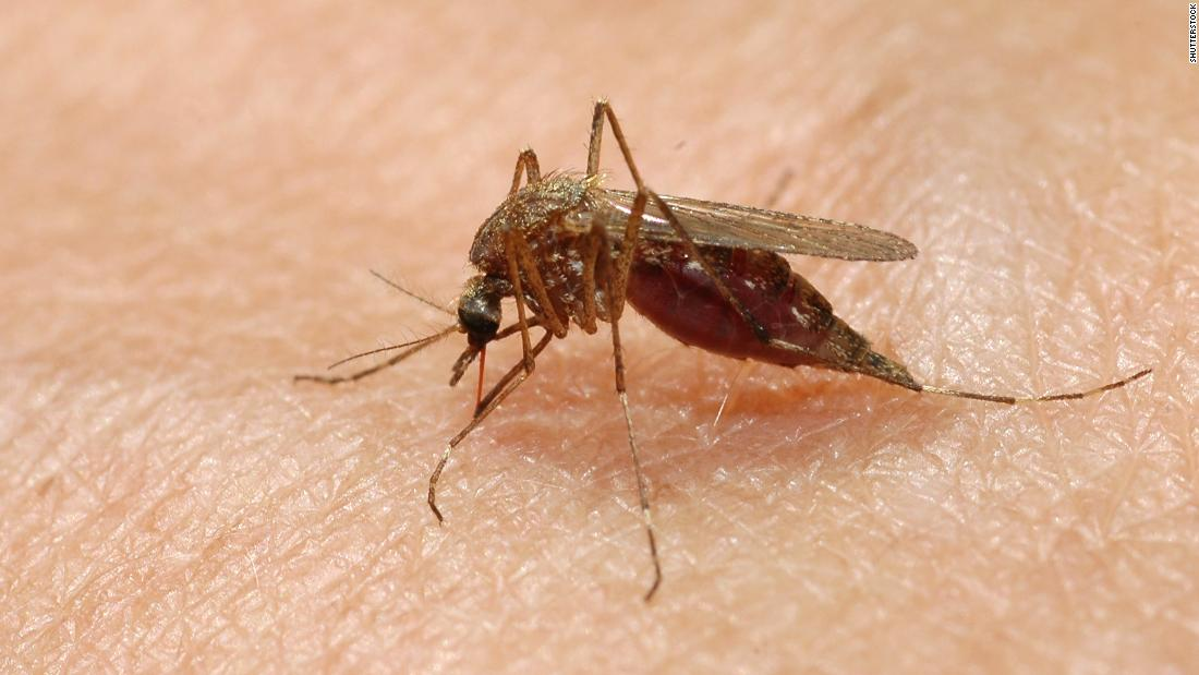Connecticut reports its first death from Eastern equine encephalitis in years as the outbreak grows
