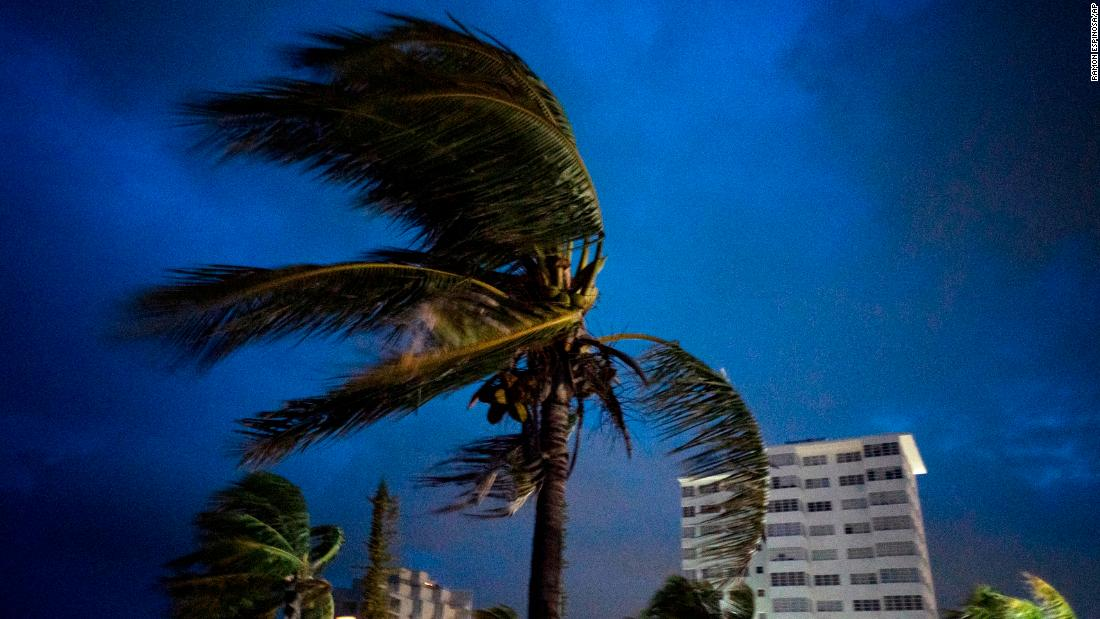 Palm trees blow in strong winds prior to Dorian's landfall in Freeport in the Bahamas.