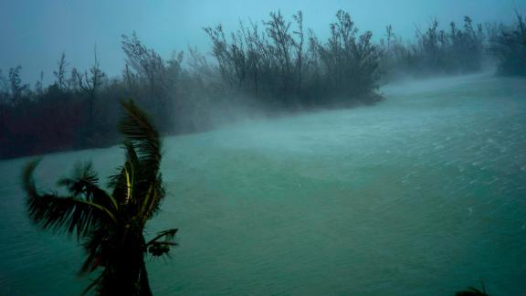 Strong winds blow the tops of trees and brush in Freeport, Bahamas, on September 2.