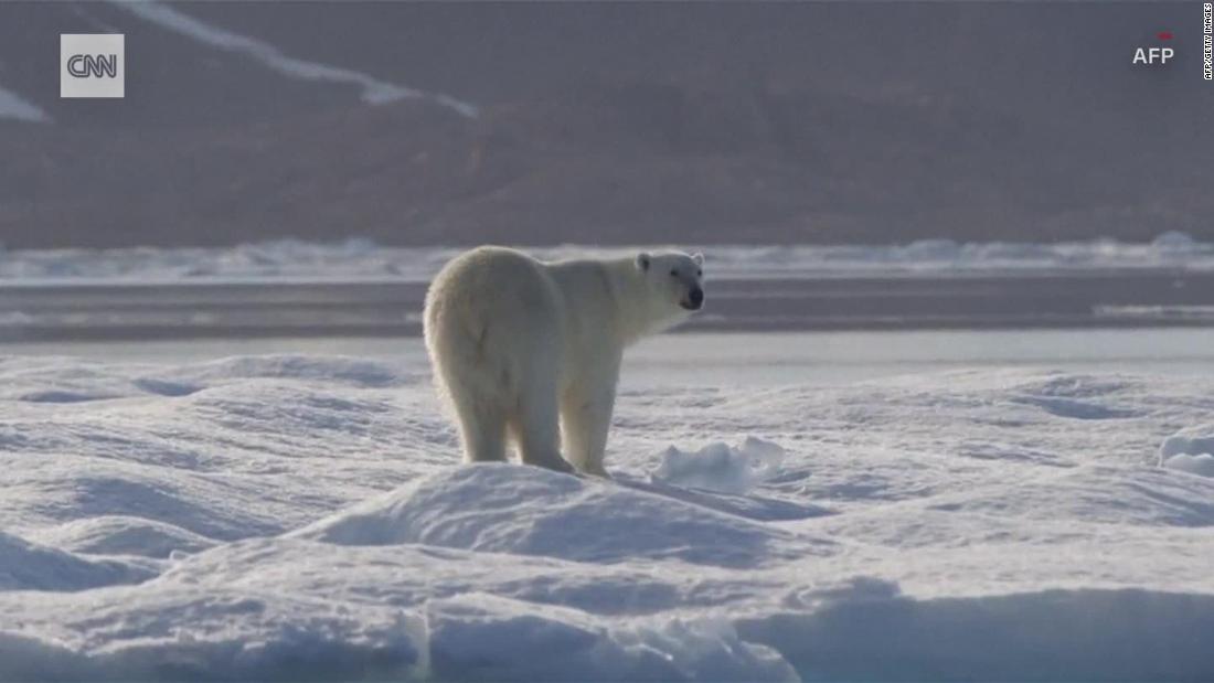 気候skeptic:このことは考えを変え