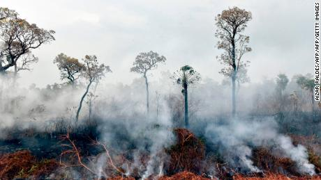 Smokes rises from forest fires in Otuquis National Park, in the Pantanal ecoregion of Bolivia.