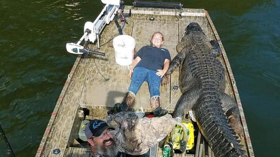 Shelby Snelson poses with the alligator and a member of the Lethal Guide Service team.