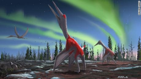 An artist's depiction shows the Cryodrakons on the ground and in the air.