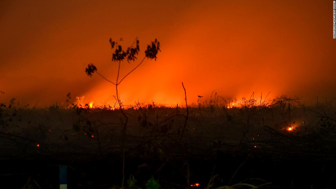 Indonesian forests are burning, and Malaysia and Singapore are choking on the fumes