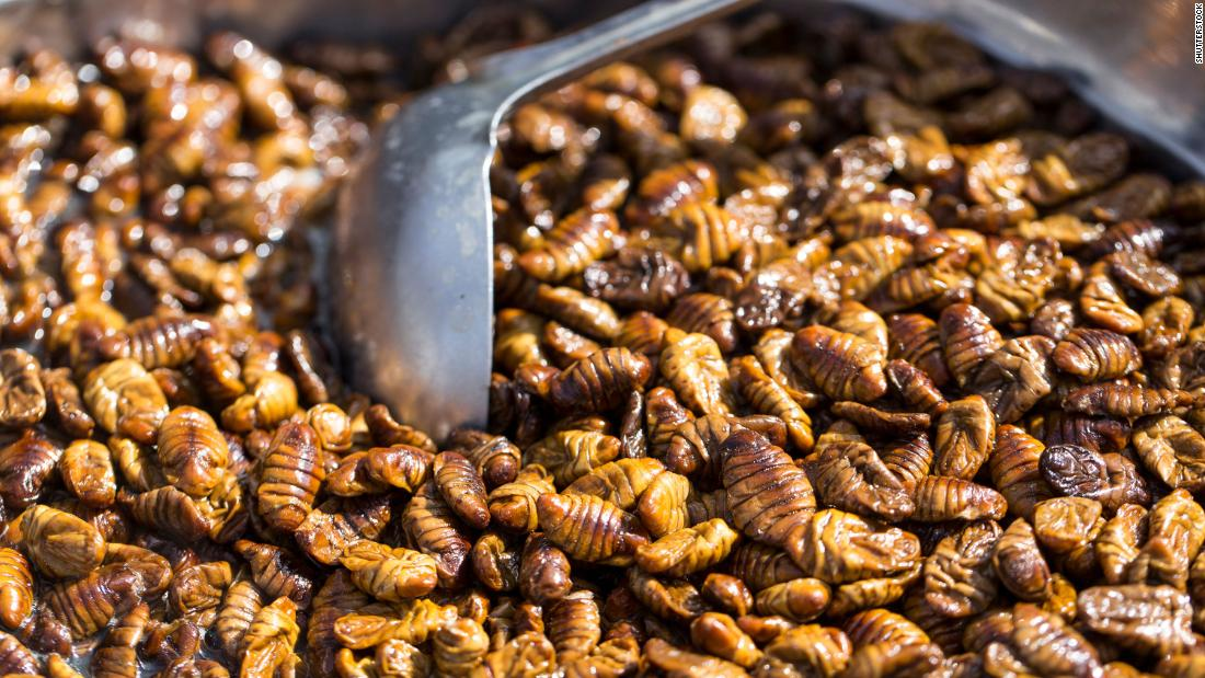 Image result for Eating bugs