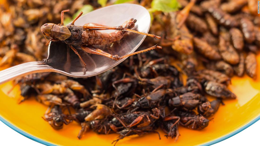 Grasshoppers are commonly eaten as a side dish, snack and lunch-box ingredient in Korea. In Mexico, they are known as chapulines, and are a popular form of street food. Preparation is simple: salt them lightly, put in a bit of water, and<br />simmer until dry. Bigger grasshoppers are deep fried or roasted.