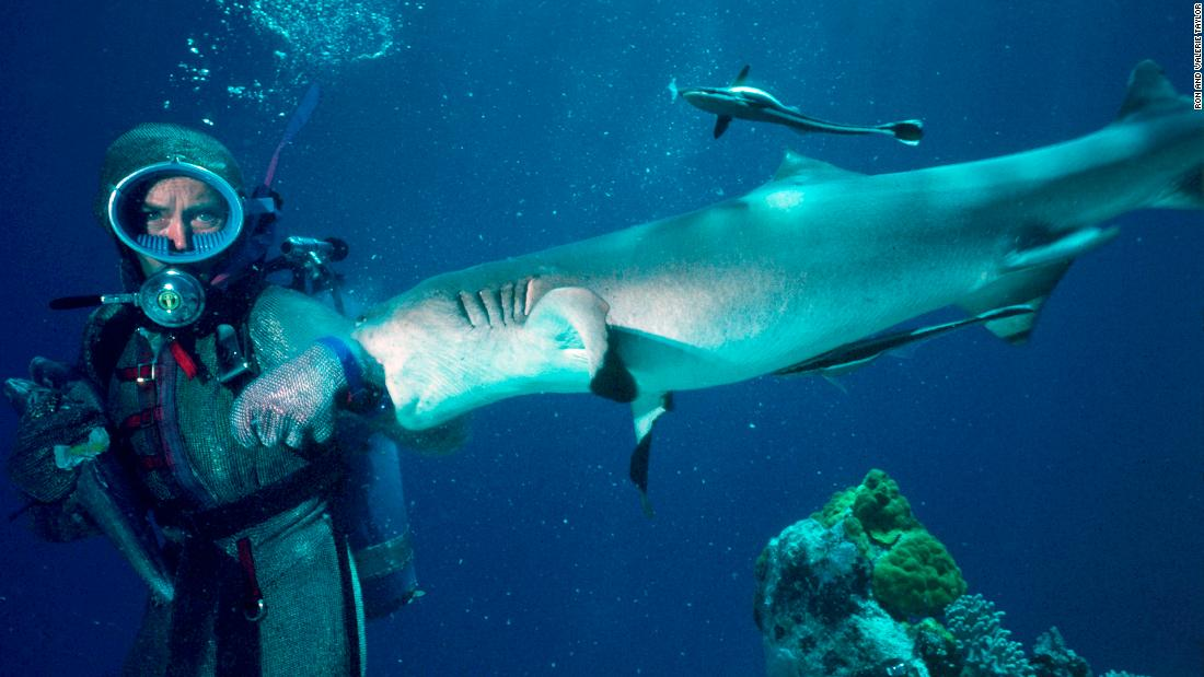 Valerie Taylor has been diving with sharks since the 1960s, and her work as a conservationist is still inspiring others today. <strong>Scroll through the gallery for more photos of her remarkable shark encounters.</strong>