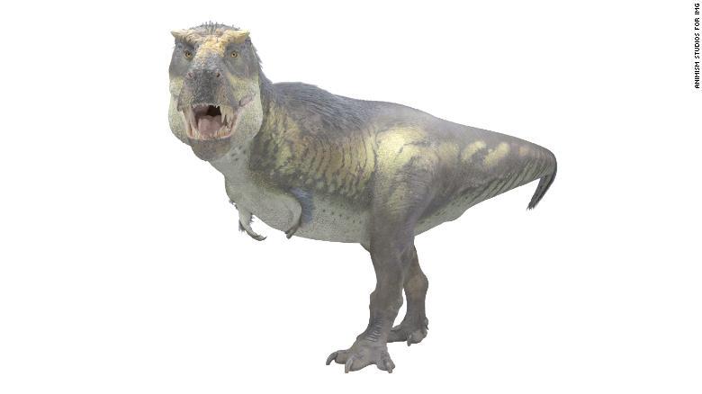 190912142333-02-victoria-the-t-rex-exlarge-169.jpg