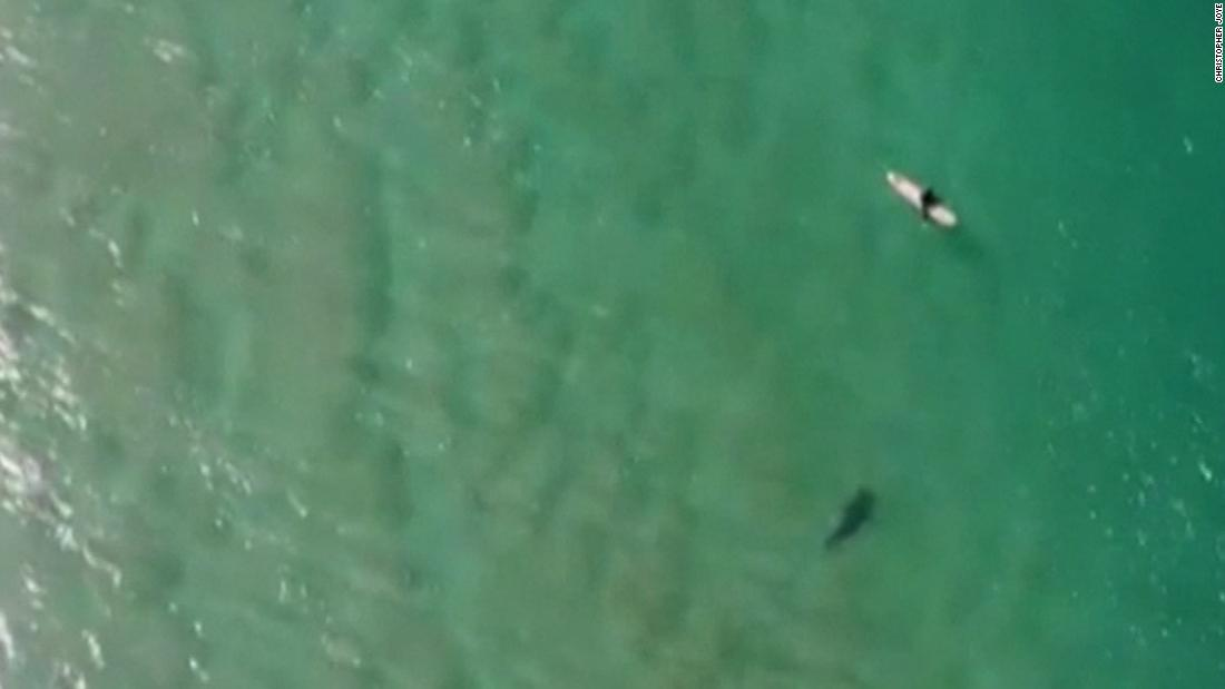 Drone catches shark stalking a surfer