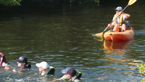 Image for Rescuers used a human chain to save a group of dolphins stranded in a Florida canal