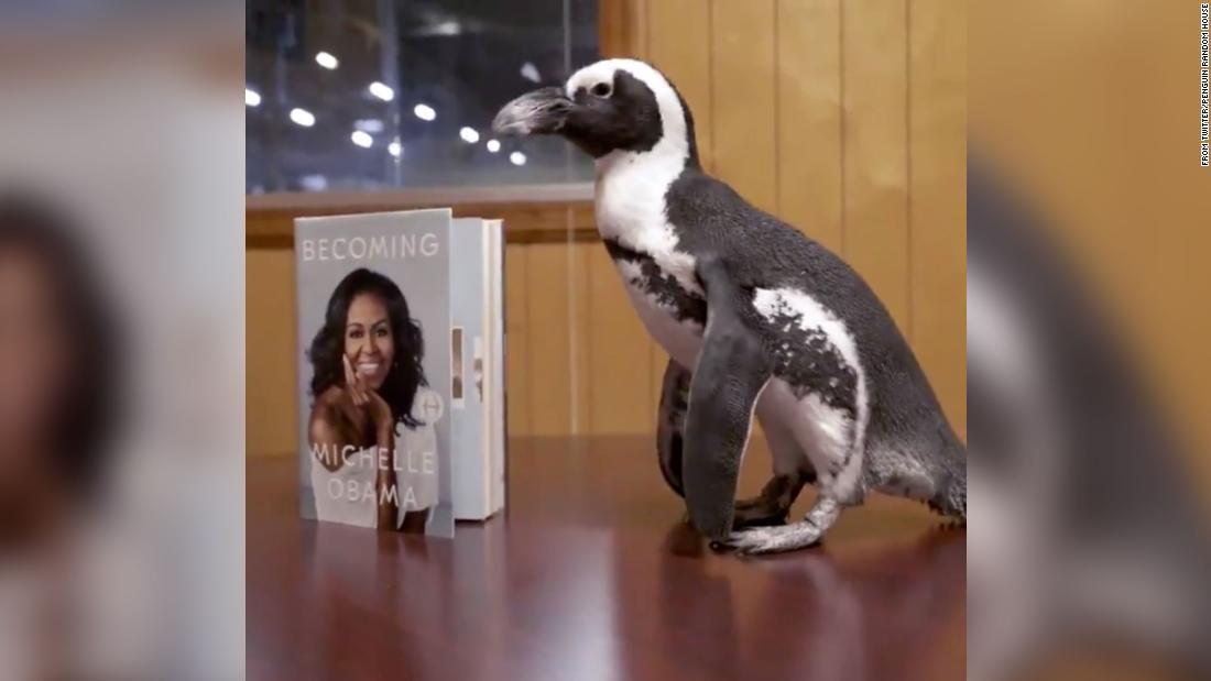 二つのペンギンが味でアメリカの出版社のペンギンのランダムです。 かないということになりました