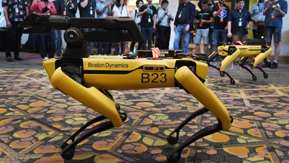 Robotic dogs called Spot and built by Boston Dynamics are demonstrated during the Amazon Re:MARS conference on robotics and artificial intelligence at the Aria Hotel in Las Vegas, Nevada on June 4, 2019. (Photo by Mark RALSTON / AFP)        (Photo credit should read MARK RALSTON/AFP/Getty Images)