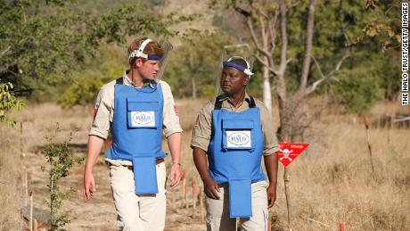 Harry, pictured visiting at a minefield clearance project in Mozambique in 2010. has picked up the mantle on landmine removal in the years since his mother's 1997 death.